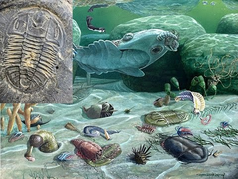 Burgess Shale and Cambrian Explosion - Hugh Ross