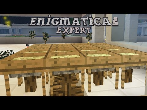 Enigmatica 2 Expert - AUTO SIFTING [E44] (Modded Minecraft)