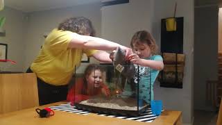 Rybki Agatki   zakładanie akwarium cz  1