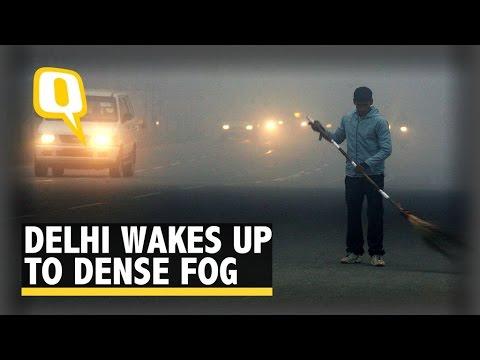 Dense Fog in Delhi Hampers Road Traffic, Delays Flights
