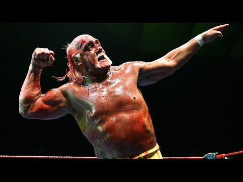 Hulk Hogan Terminated By WWE for Racial Slurs Caught on Tape