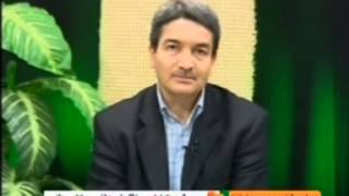 Bakara Suresi Kuran Tefsiri 265 269 Ayetler Prof Dr Şadi Eren