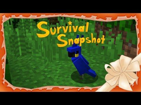 UN COMIENZO FANTÁSTICO - Survival Snapshot 17w13a