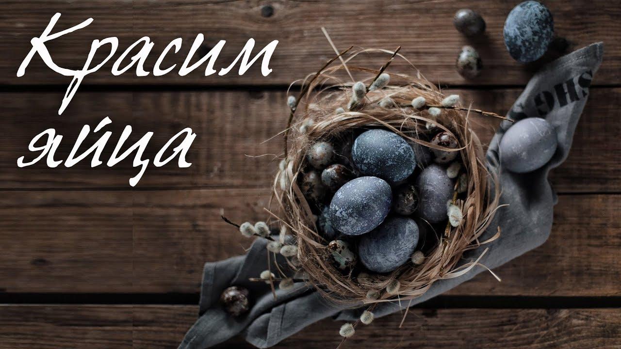 Красим яйца на пасху Каркадэ - YouTube