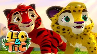 Leo and Tig - Episode 11 - The Rise of the Dragon - Cartoon for Kids Movies -  Moolt Kids Toons