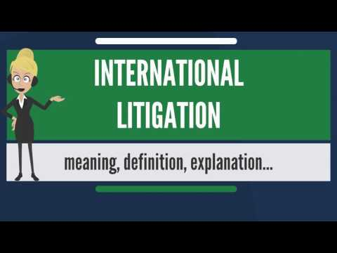 What is INTERNATIONAL LITIGATION? What does INTERNATIONAL LITIGATION mean?