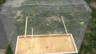 як зробити велику клітку для папуги своїми руками
