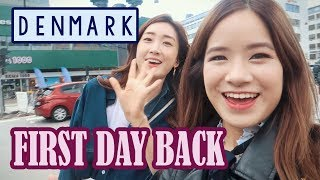 First Day Back in Denmark | Tivoli & Pedestrian Street ft. Bambigirl