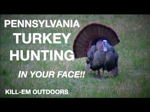 Pennsylvania Turkey Hunting