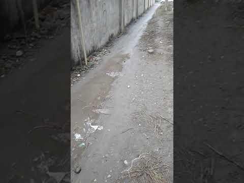 В Прохладном украли тратуары