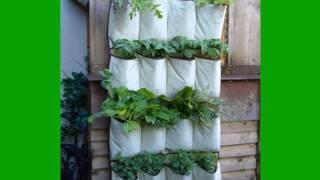 Vertical Vegetable Gardening | Vertical Gardening | Diy Vertical Gardening | Ideas | How To