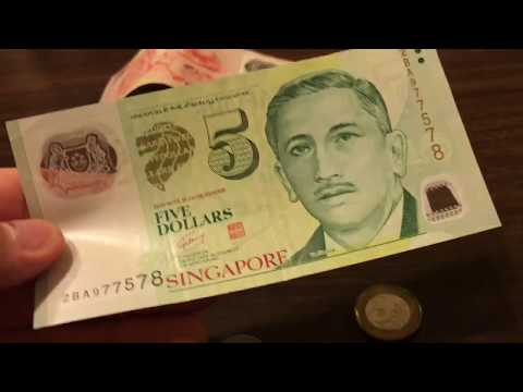 What Does Singapore Money Look Like?