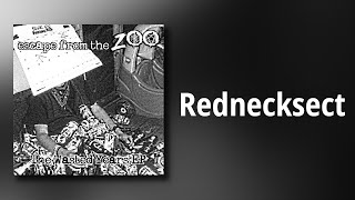 Escape From The Zoo // Rednecksect
