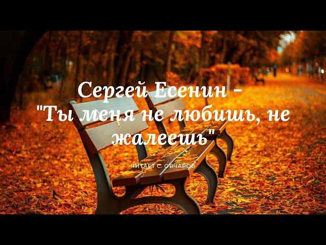 Изображение предпросмотра прочтения – СеменОвчаров читает произведение «Ты меня не любишь, не жалеешь...» С.А.Есенина