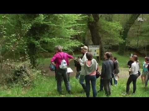 Invitation botanique à Belhade