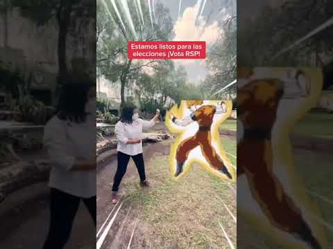 Candidata RSP Querétaro vs Goku
