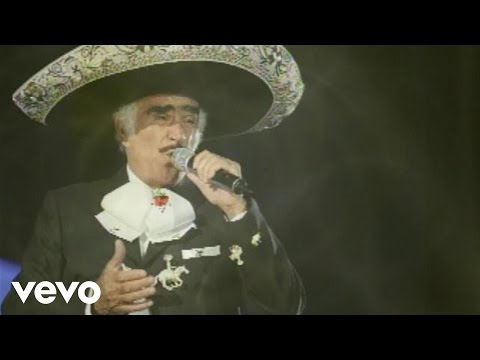 Vicente Fernández - Que Te Vaya Bonito