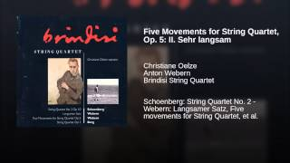 Five Movements for String Quartet, Op. 5: II. Sehr langsam