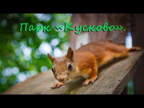 Москва. Парк Кусково.