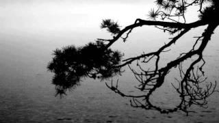 Drakonhail - Nature Misanthropique