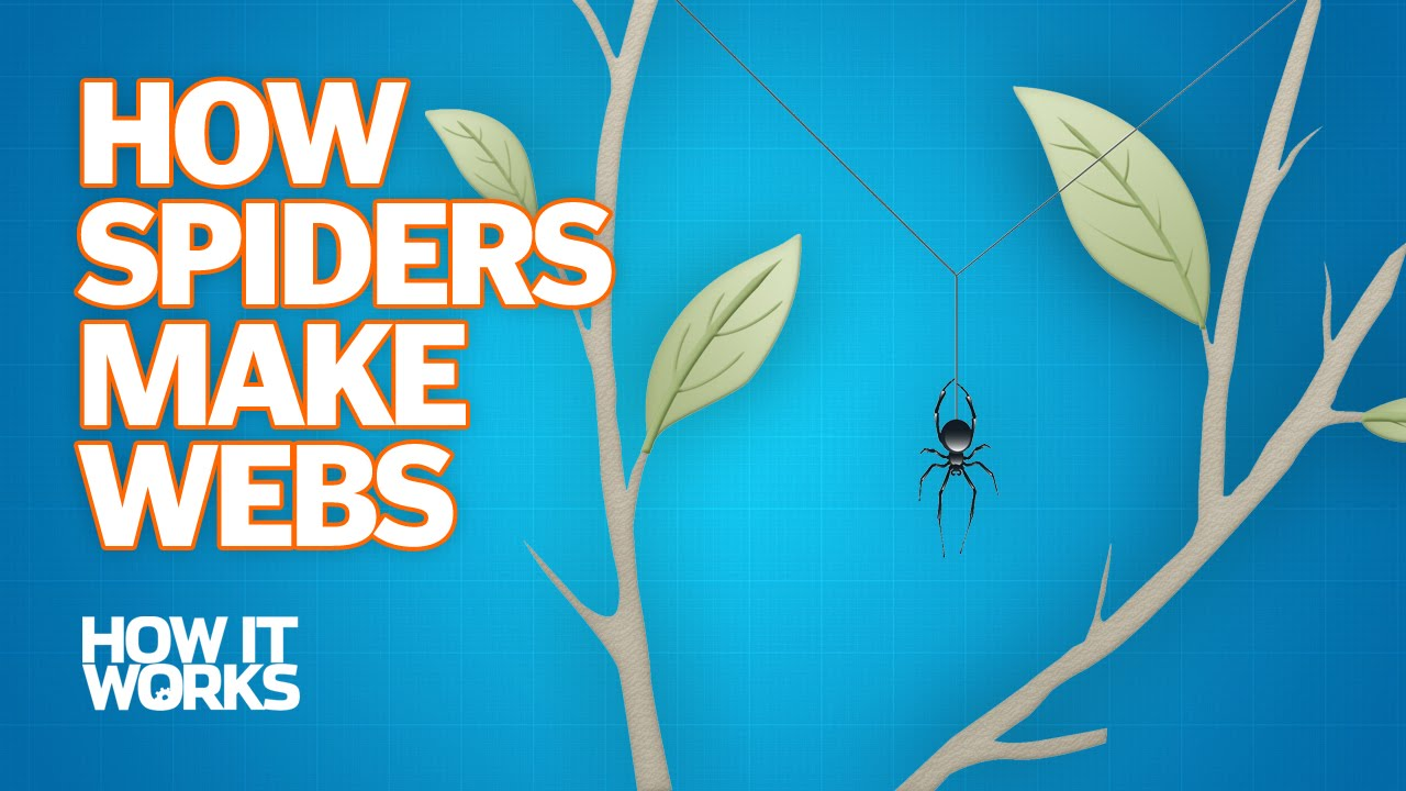 how to create spider web