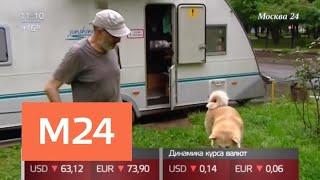 Жителя дома на колесах в Москве терроризирует агрессивный сосед - Москва 24