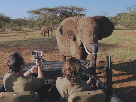 AFRICAN SAFARI 3D   Trailer german deutsch [HD]