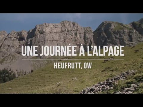 Fromage d'alpage Suisse