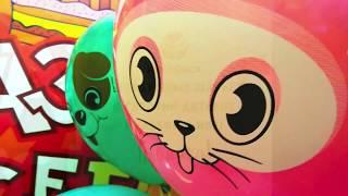 """Воздушные шары """"Кот и Пес"""" Globos Payasо мексиканского производителя Latex Occidental"""