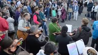 Arcisse en Folk 2017 // Grand Orphéon