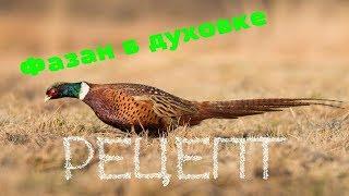 Рецепт фазана. Фазан в духовке. Как приготовить фазана?