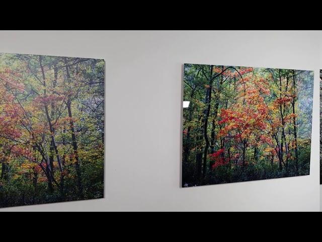 Giclee Canvas vs HD Metal Art Media Comparison
