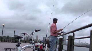Fishing at Liberty State Park,  Jersey City New Jersey - Blue Fish