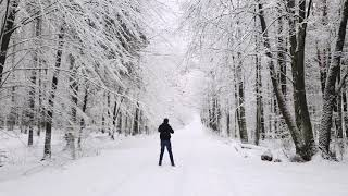Spacer zimą w lesie