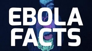 EBOLA VIRUS!!!! Is this the Pestilence that Jesus Warned about??