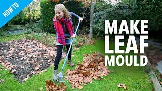 How to make leaf mould for your garden