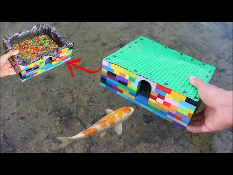 LEGO FISH AQUARIUM For My NEW COLORFUL FISH!!