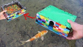 LEGO FISH AQUARIUM For My NEW COLORFUL FISH!!