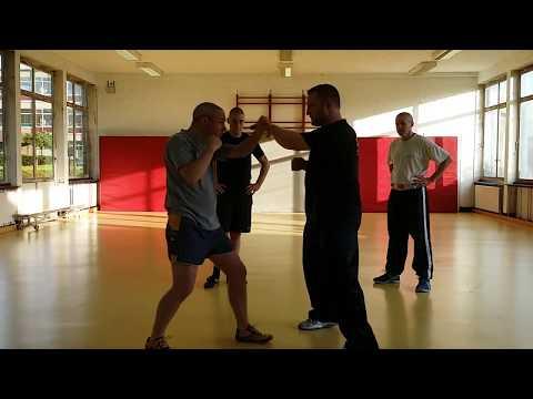 Practical Tai Chi Chuan: Running Thunder Hand