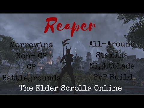"ESO ""Reaper"" All-Around Stamina Nightblade PvP Build Morrowind"