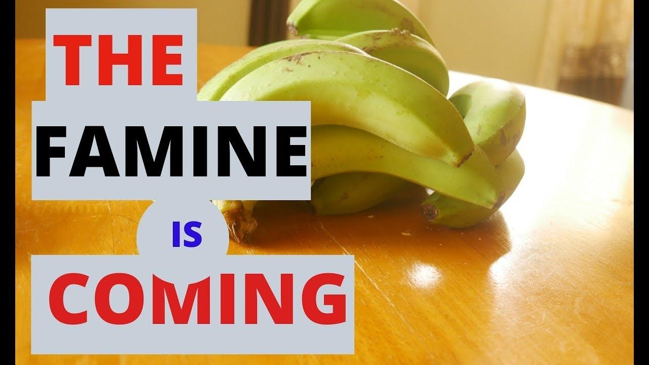 Famine Coming! Prepare!