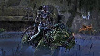 Elder Scrolls Online: Murkmire Developer Interview - Gamescom 2018
