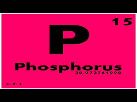 Study guide 15 phosphorus periodic table of elements youtube study guide 15 phosphorus periodic table of elements urtaz Choice Image