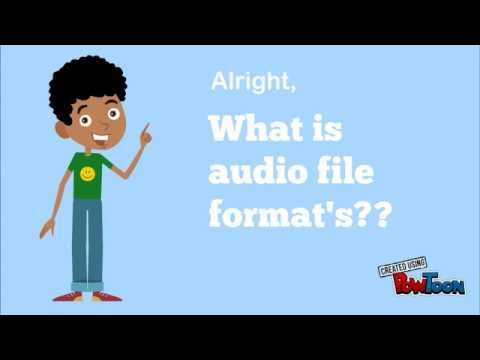 Audio File Format