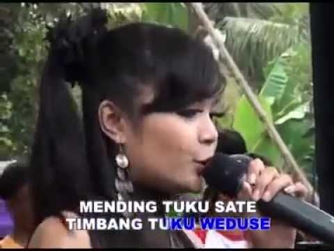 Wedhus (Live) - Dian Marshanda | Shazam