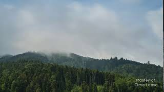 302 Time Lapse Forest Clouds Foggy Mountains | Zeitraffer Schwarzwald Wald Neblig Wolken Berge 8K