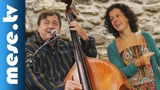Kárász Eszter - Eszterlánc mesezenekar: Medve dal (Művészetek Völgye, Kapolcs 2015) | MESE TV