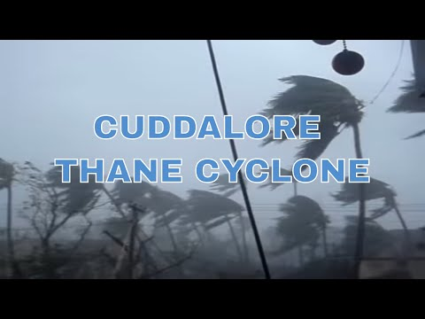Thane Cyclone in Cuddalore (30/12/2011)