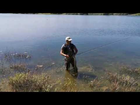 2020.05.28 #1 Fisherman's Catch, Draycote Water, Rugby, Warwickshire UK