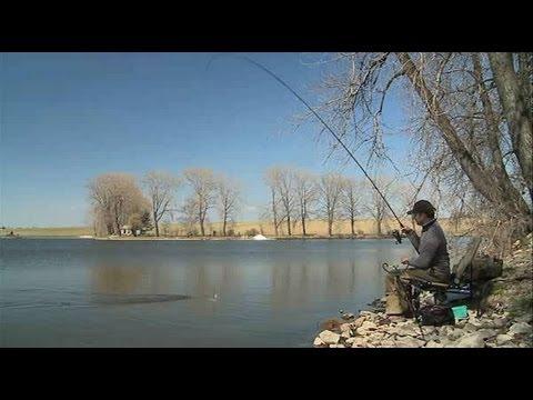 Feeder na rybníku - 1. díl